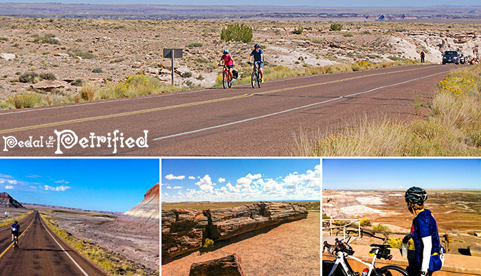 bike riders in the Petrified Forest National Park