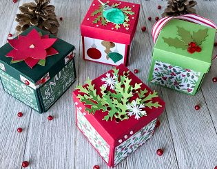 Discovery Nest gift box