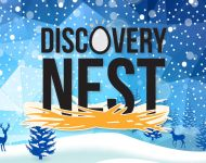 Discovery Nest Holiday Activities