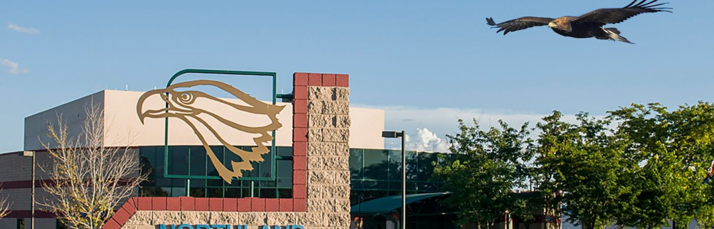 golden eagle flying over campus sign